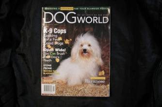 KASE Havnese dog on the cover of Dog World Magazine